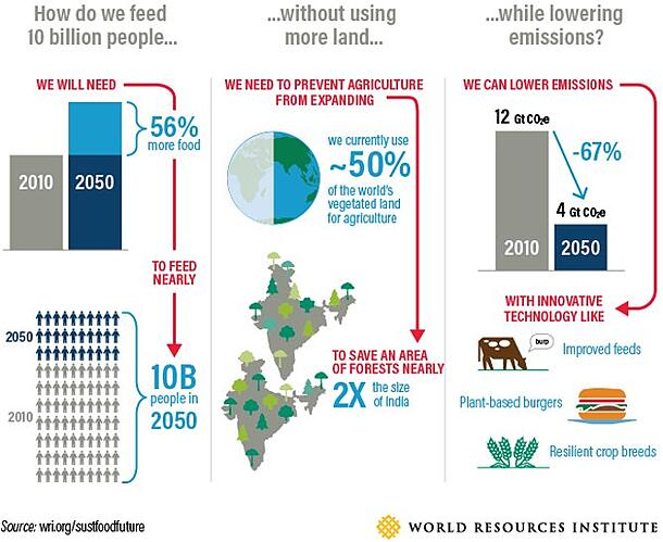 The challenges for the global agriculture industry